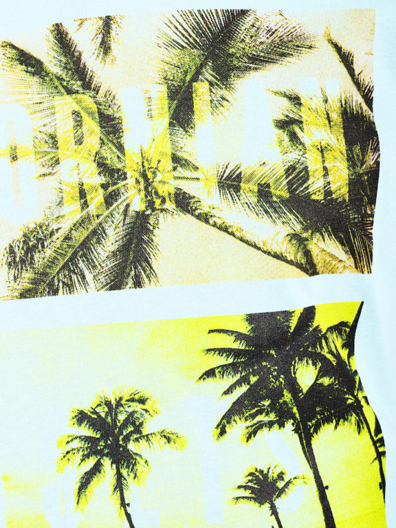 E-Bound shirt ronde hals California sunset beach blauw 145785.H.TS (4)