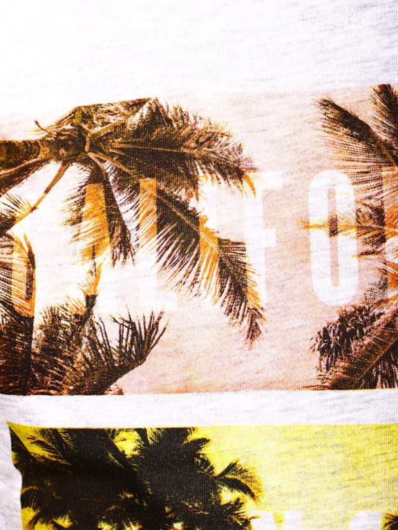 E-Bound shirt ronde hals California sunset beach grijs 145785.H.TS (3)